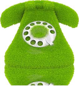 telefono-verde