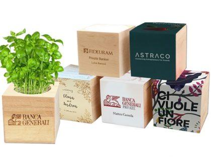 Eco Cube<p> Fiori e piantine in cubo di legno