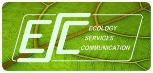 Esc Services